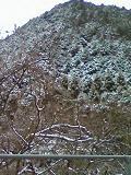 2009-01-2